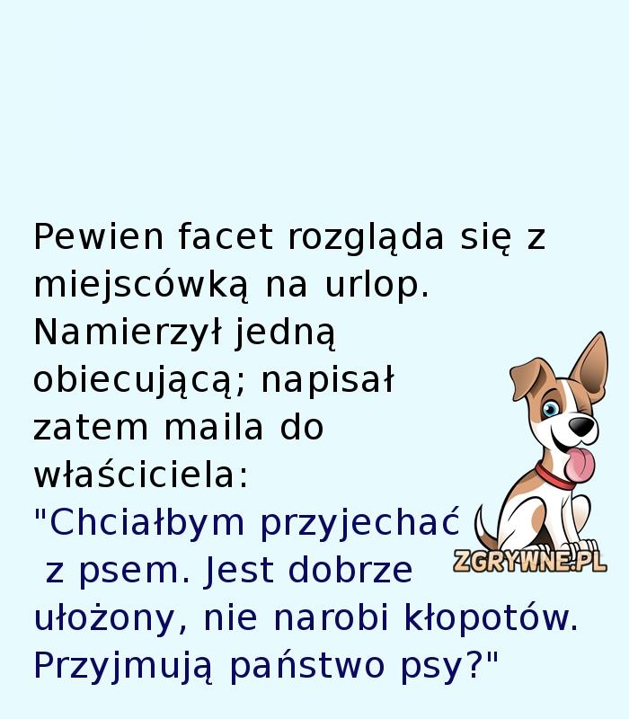 Ta odpowiedź pozytywnie zaskoczyła właściciela psa... :)