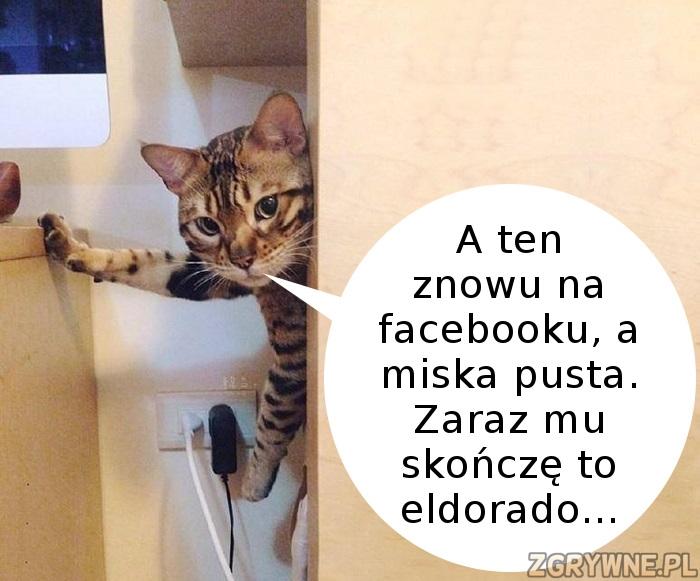 Bo o kota trzeba dbać... :)