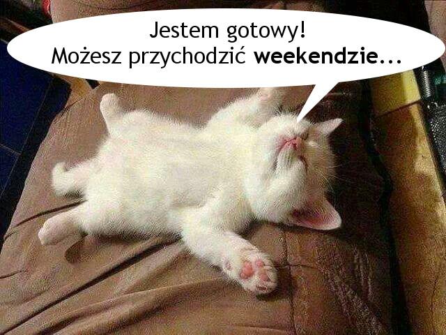 Jestem gotowy! Możesz przychodzić weekendzie...