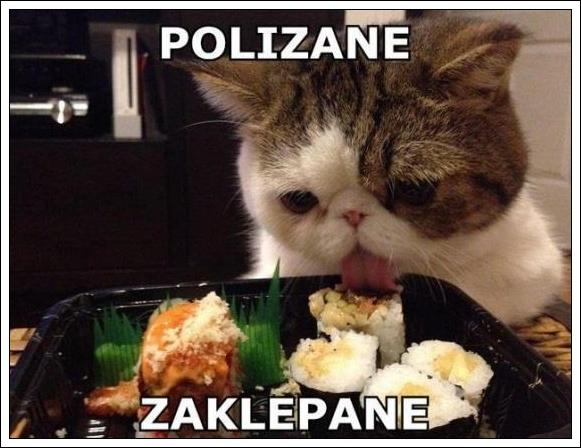 POLIZANE ZAKLEPANE
