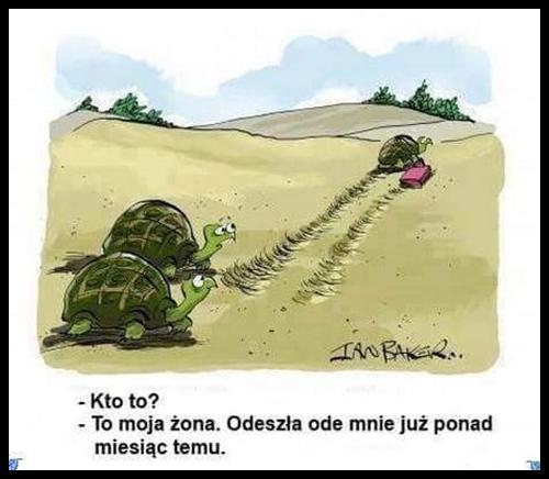 Rysunkowy humor małżeński :)