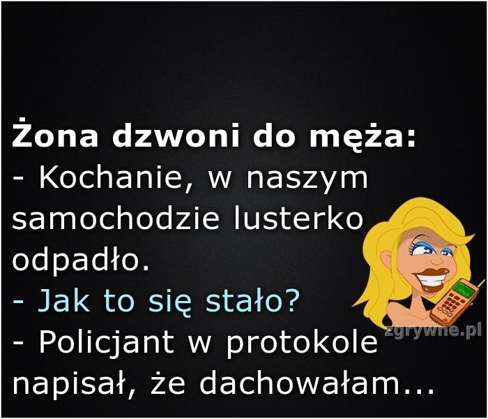 Ha ha ha... Pokrętne tłumaczenie się żony :)