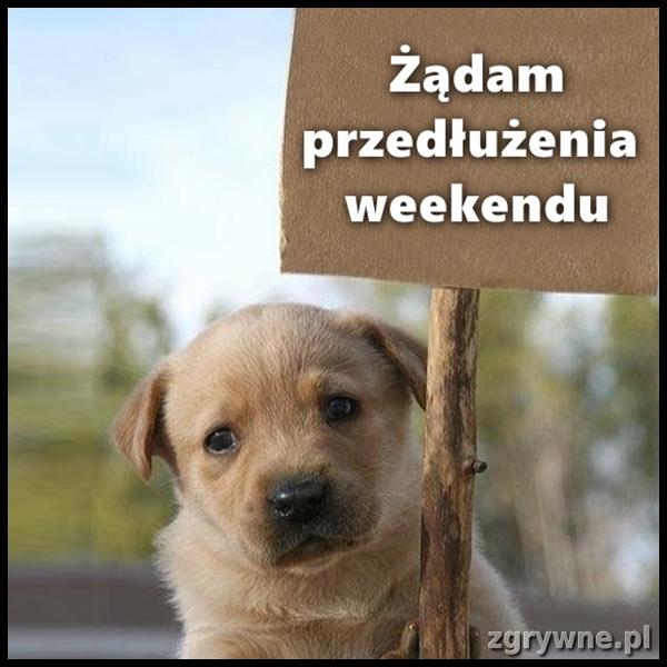 Żądam przedłużenia weekendu