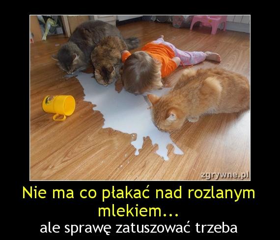 Nie ma co płakać nad rozlanym mlekiem...