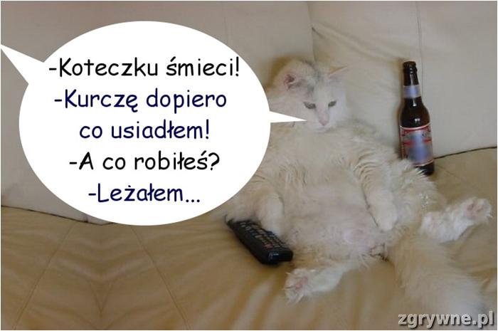 Leniuszek :)