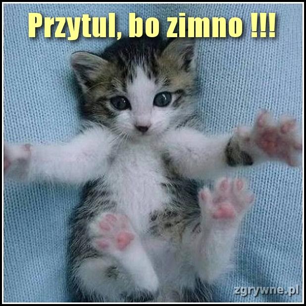 Przytul, bo zimno !!!
