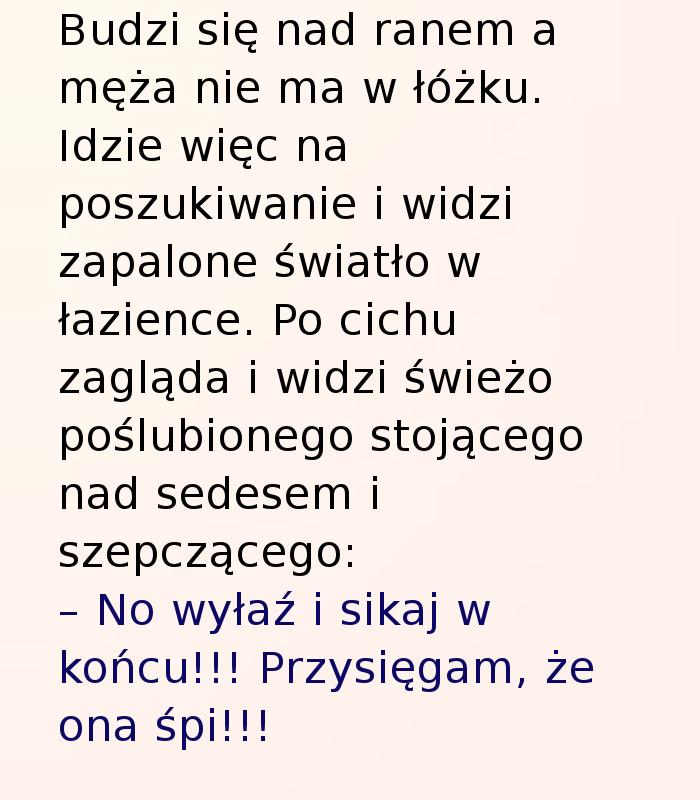 http://zgrywne.pl/upload/2e07852ca89feb4dccee09ac05a33d1a.jpg