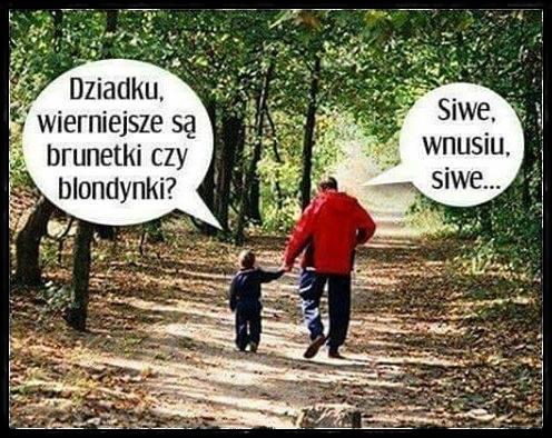 Wnuczek pyta dziadka...