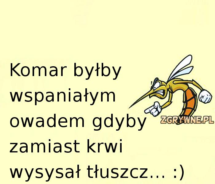 Komar byłby wspaniałym owadem gdyby...