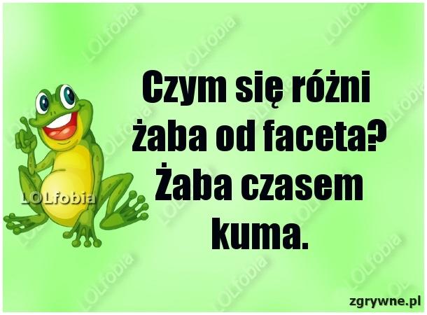 Czym się różni żaba od faceta? Żaba czasem kuma...