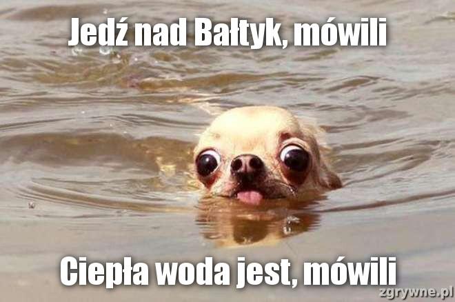 Jedź nad Bałtyk, mówili...Ciepła woda jest, mówili...