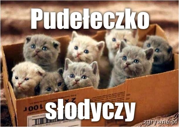 Pudełeczko słodyczy :)