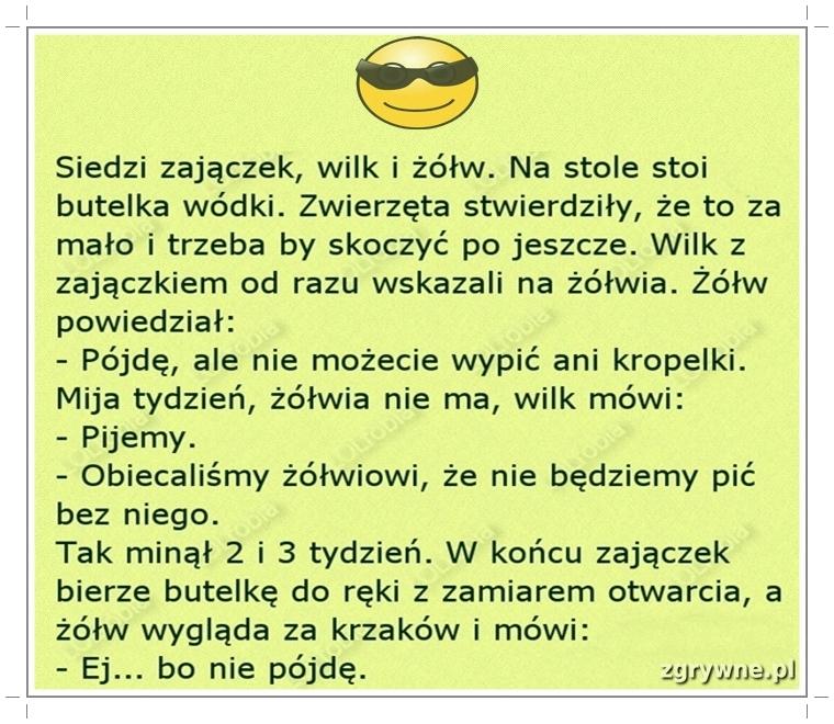 Ha ha ha...no spoko :)