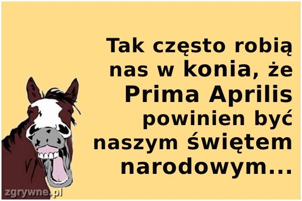 Tak często robią nas w konia, że Prima Aprilis powinien być...