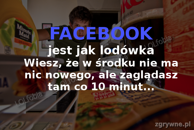 Facebook jest jak lodówka...