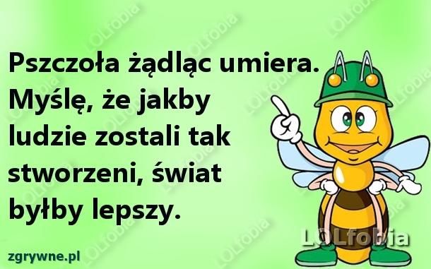 Ludzie jak pszczoły...