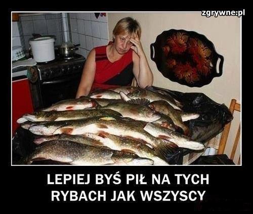 Lepiej byś pij na tych rybach jak wszyscy...