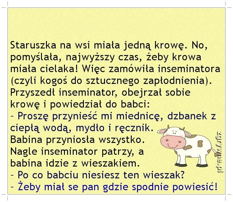 Ha ha ha... Bezpośrednia babunia... :)