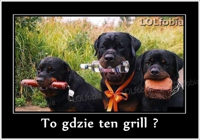 To gdzie ten grill?