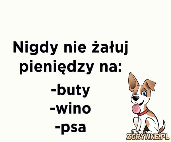 Nigdy nie żałuj pieniędzy na: buty, wino i...