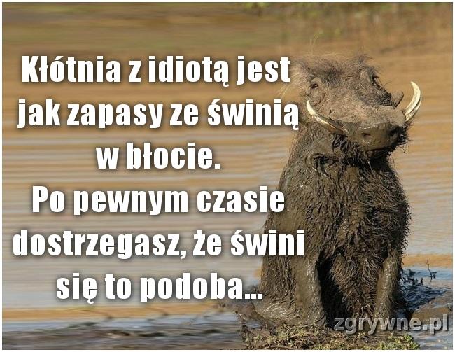 Kłótnia z idiotą jest jak zapasy ze świnią w błocie.