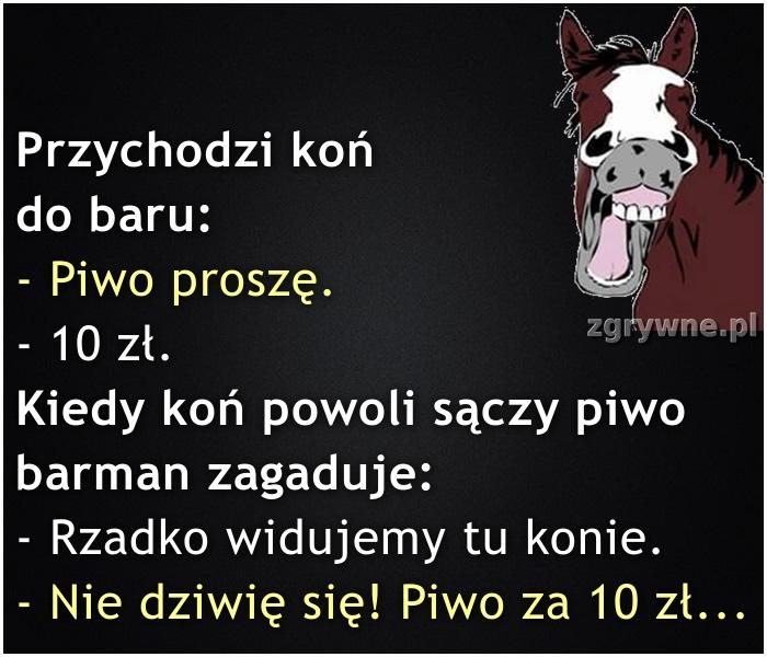 Ha ha ha... Koń by się uśmiał ;)