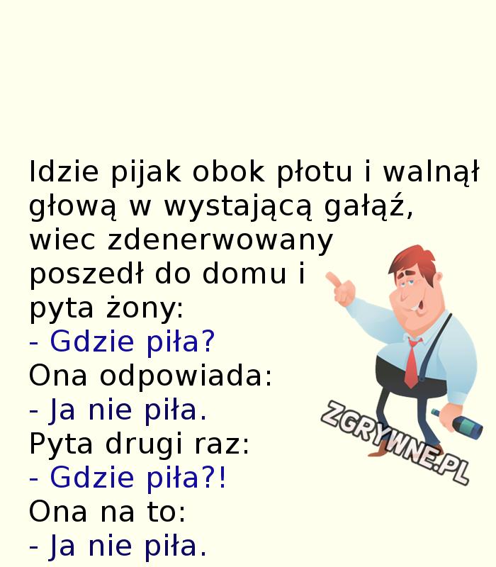 Niezły galimatias... :)