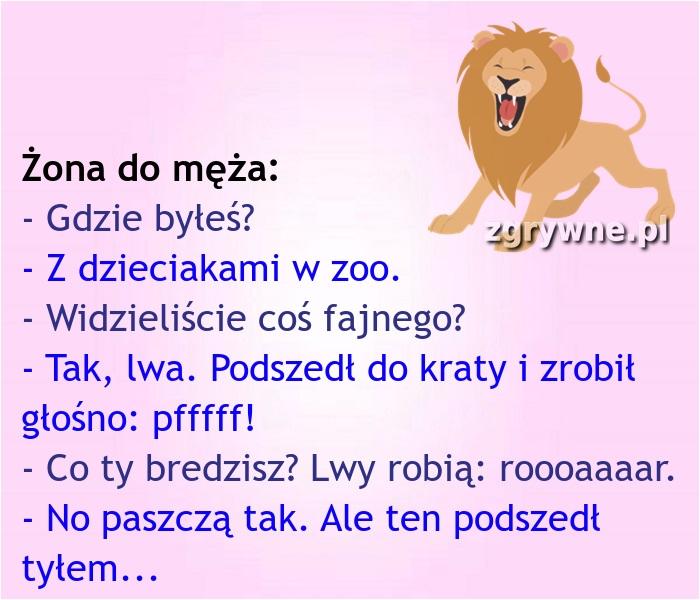 Z wizytą w zoo... :)