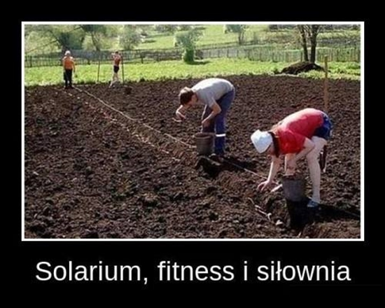 Trzy w jednym - solarium, fitness i siłownia.