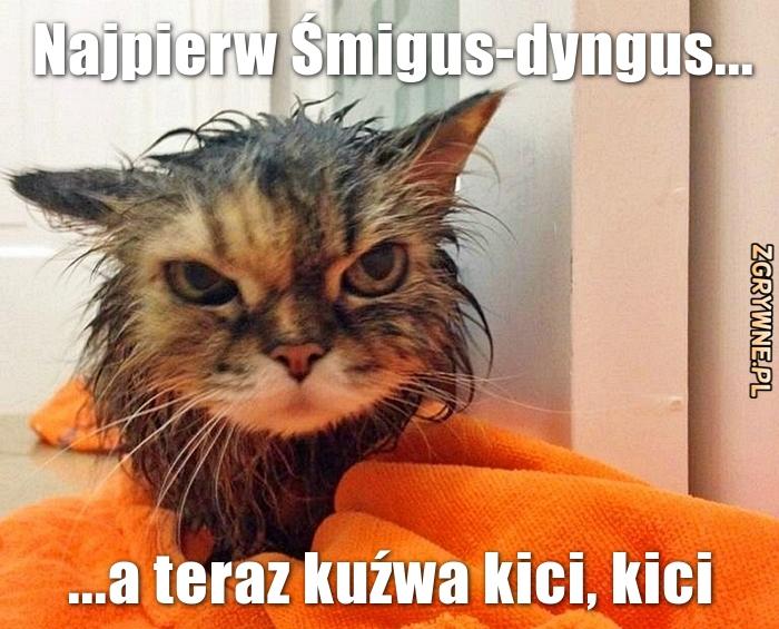 Najpierw Śmigus-dyngus, a teraz kici, kici...