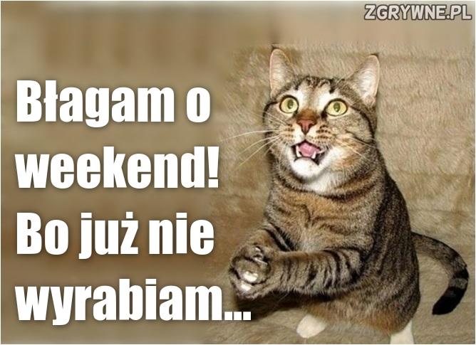 Błagam o weekend! Bo już nie wyrabiam...