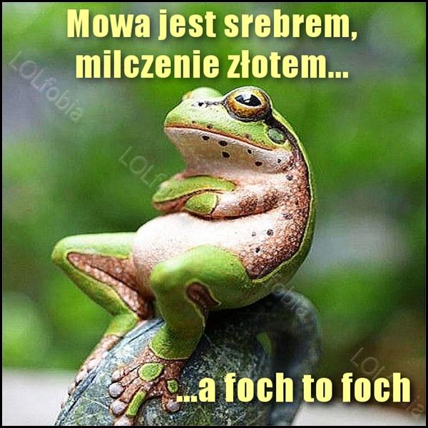 Mowa jest srebrem, milczenie złotem... A foch to foch