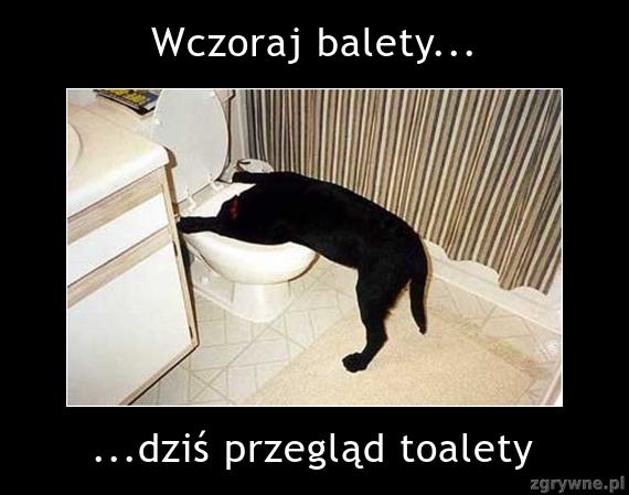 Wczoraj balety... Dziś przegląd toalety :)