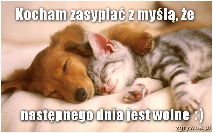 Kocham zasypiać z myślą, że następnego dnia jest wolne :)