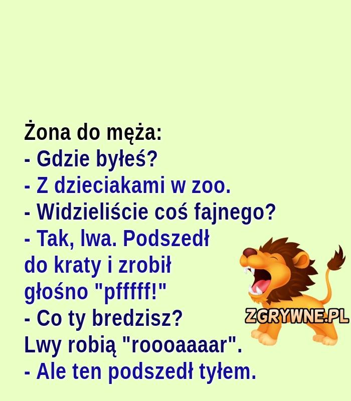 Przygoda w zoo... :)
