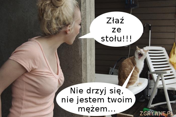 Ostra riposta kota... :)