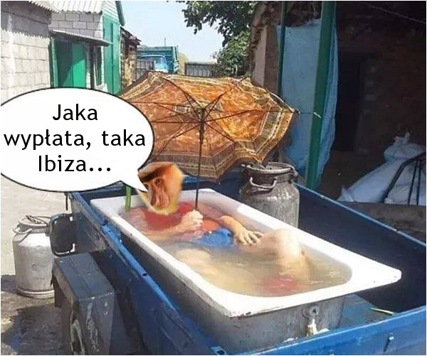 Jaka wypłata, taka Ibiza...