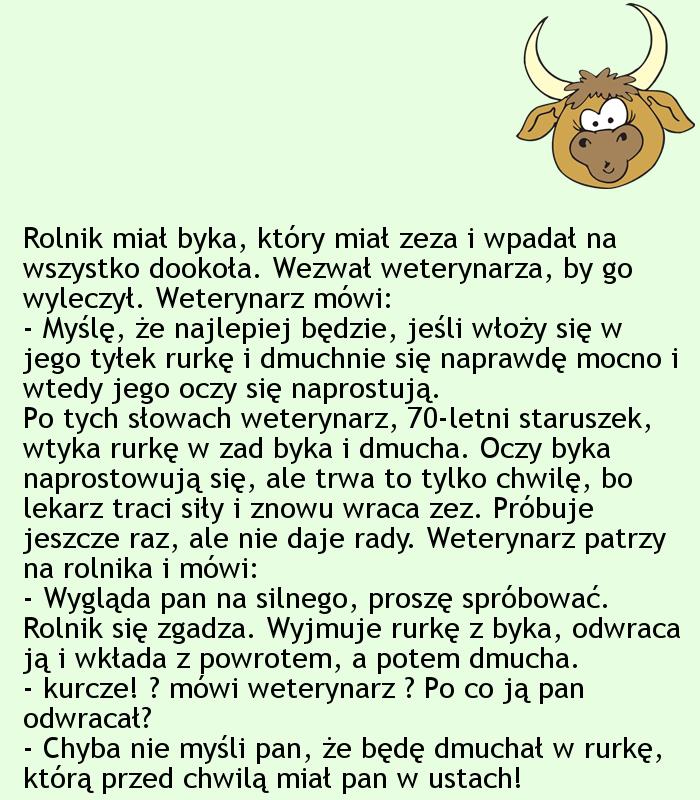 Kawał po byku... ;)