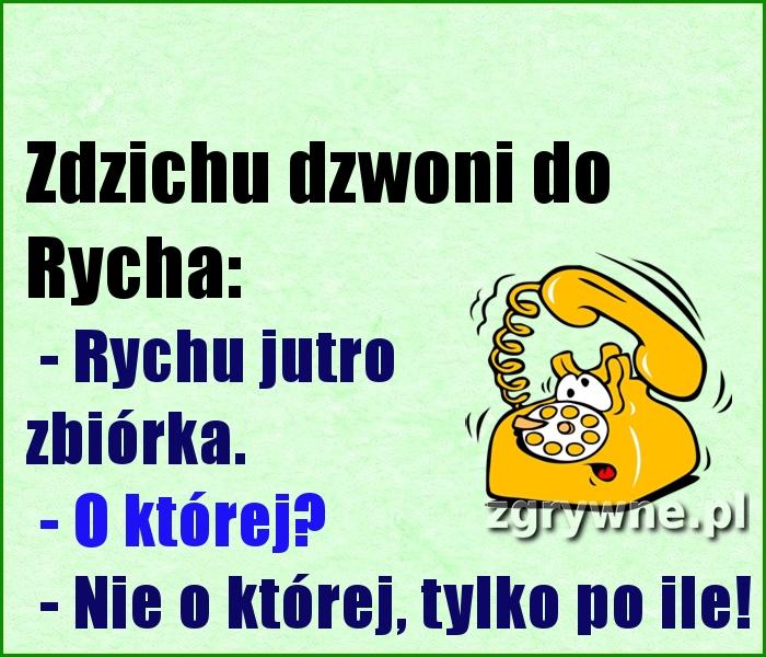 Zdzichu dzwoni do Rycha: