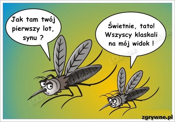 O komarach na wesoło...