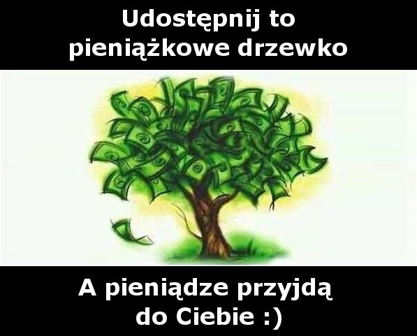 Udostępnij to pieniążkowe drzewko. A pieniądze przyjdą do Ciebie