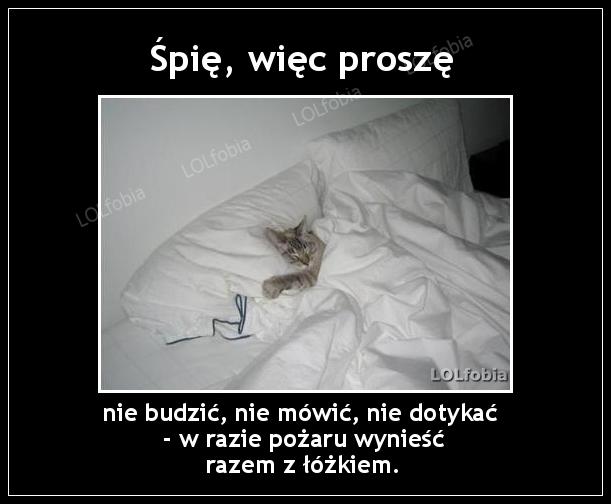 Śpię, więc proszę nie budzić, nie mówić, nie dotykać.